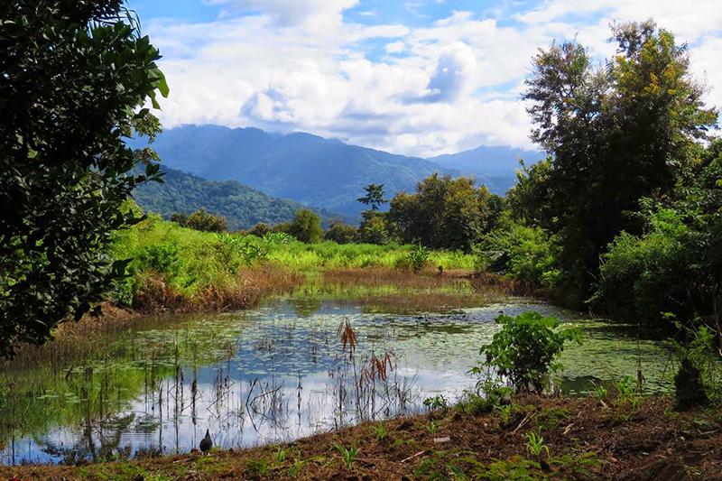 تانزانیا با سواحل بسیار زیبا و جاذبه های نظیر پارک ملی روآها ، پناهگاه حیات وحش سلوس ، جزیره پمبا ، کوه کلیمانجارو و بسیاری دیگر می تواند مقصد مناسبی برای سفر ماه عسل باشد