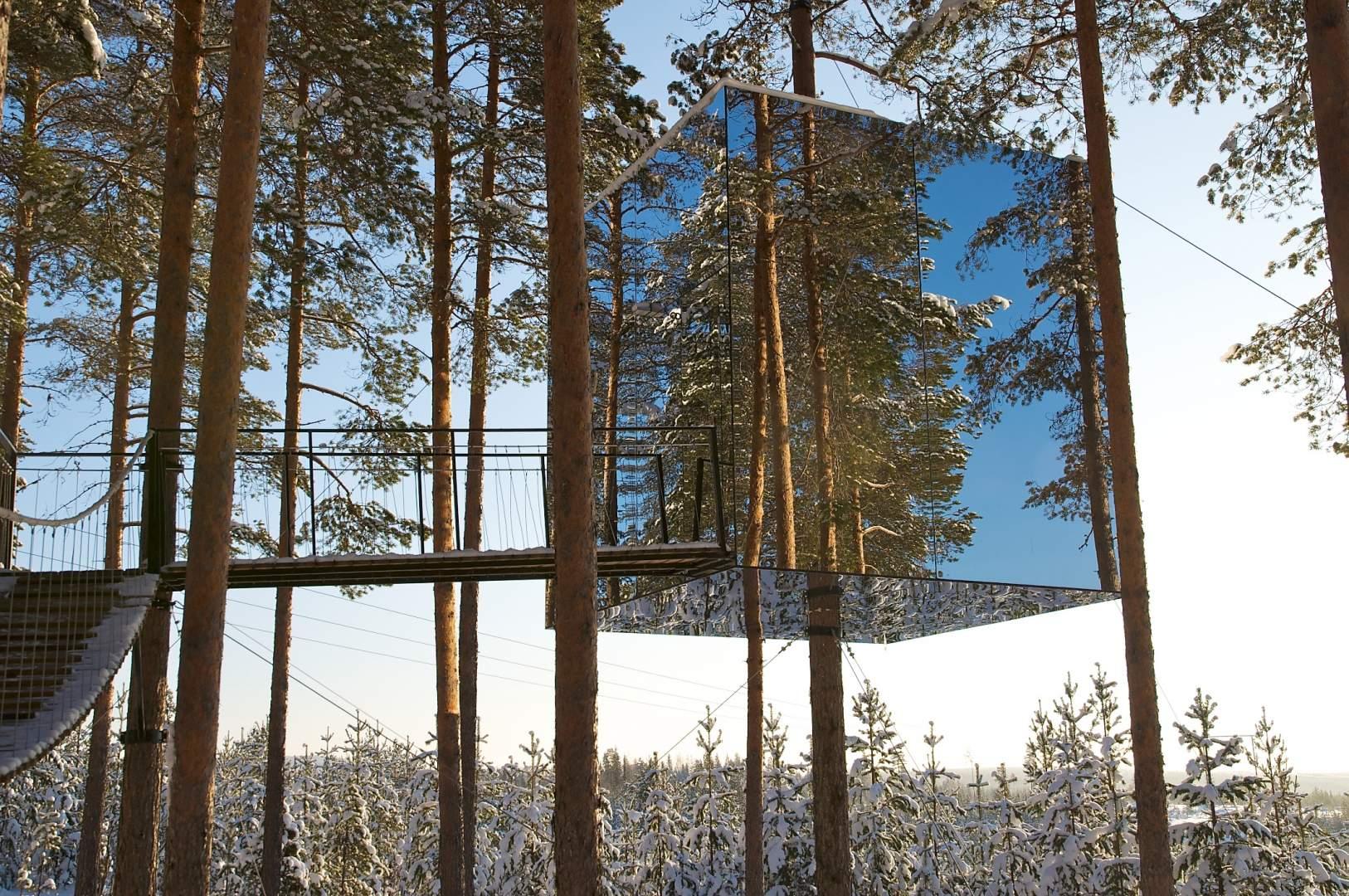 این هتل از خانه های درختی درست شده است که اتاق های آن شبیه کپسول های شیشه ای هستند