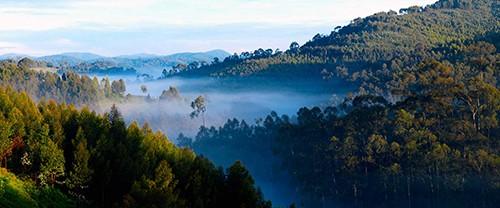 پارک ملی کوههای اتشفشانی